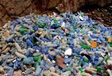 Photo of Wałbrzych – strefa wolna od… plastiku?