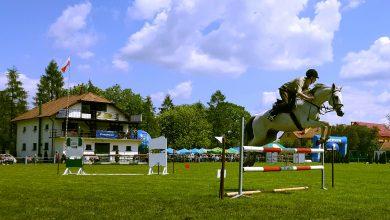 Photo of Państwowe hodowle koni na skraju bankructwa?