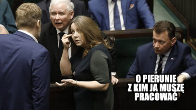 """Photo of Joanna Lichocka – przez skandale do bogactwa. Kim jest i ile zarabia autorka sejmowego """"fucka""""?"""