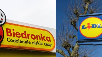 Photo of Polacy uwielbiają Biedronkę i Lidla, ale goni ich pewien zielony płaz