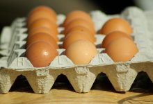 Photo of Hodowcy alarmują: Jajka będą drogie, bo nie ma niosek