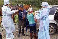 Photo of Dżuma w Mongolii. Rosja rozpoczyna masowe szczepienia. Co jeszcze przyniesie ten rok?