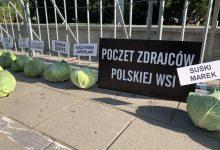 """Photo of """"356 pustych łbów posłów"""". Niecodzienny happening AgroUnii pod Sejmem."""