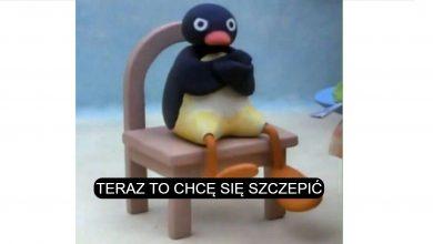 """Photo of Poranne Plotki Biznesowe: Afera z celebrytami przekonała wielu Polaków do szczepień. Górale powiedzieli rządowi """"veto""""."""