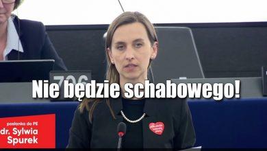 Photo of Doktorkini Spurek chce zakazać promowania mięsa, mleka i nabiału. Koniec ze schabowym?