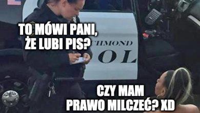Photo of Niesłychane. Rząd PiS dofinansował 175 tys. zł… agencji towarzyskiej xD