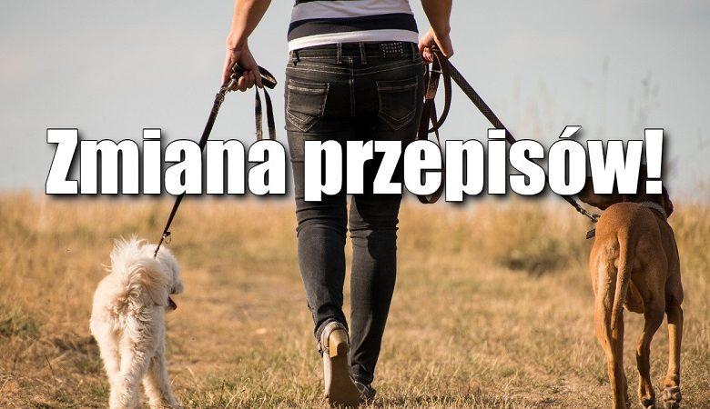 plotkibiznesowe.pl: Wychodzisz z psem na spacer? Od 10 kwietnia będziesz mieć problem
