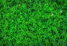 Photo of ORLEN wyemitował zielone obligacje za ponad 1 mld PLN
