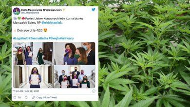 Photo of W święto 420 do Sejmu weszły ustawy o legalizacji marihuany. Dekryminalizacja coraz bliżej?