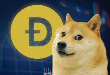 Photo of Dogecoin wart niemal 70 centów! Elon Musk pompuje kolejne rekordy