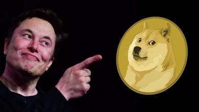 Photo of Elon Musk poprowadził Saturday Night Live i spowodował… spadek wartości Dogecoin