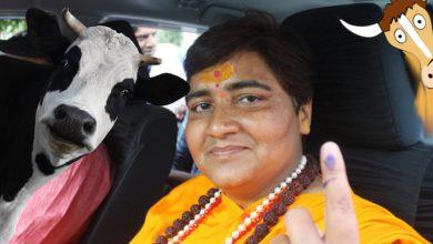 Photo of Prominentna indyjska polityk poleca chorym na COVID-19… krowi mocz