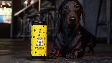 Photo of PAWSE – pierwsze piwo dla psów wyprodukowane we Włoszech