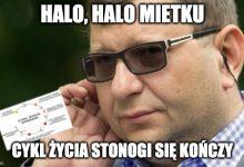Photo of Zbigniew Stonoga trafi do więzienia na 15 lat? W tle liczne wyłudzenia