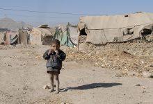 Photo of Airbnb oferuje bezpłatne zakwaterowanie dla afgańskich uchodźców