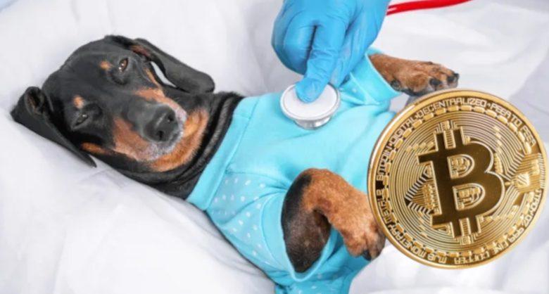 Bitcoin, inwestycja w kryptowaluty
